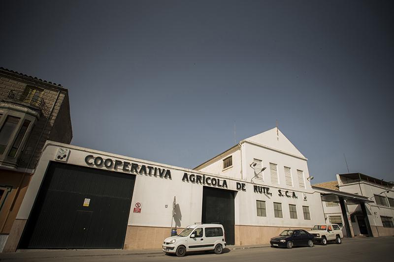 cooperativa-agricola-de-rute-1